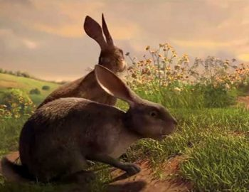 Watership Down Netflix - Review